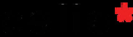 Black Friday celio